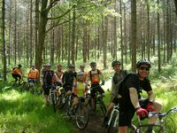 In the Wyre Forest